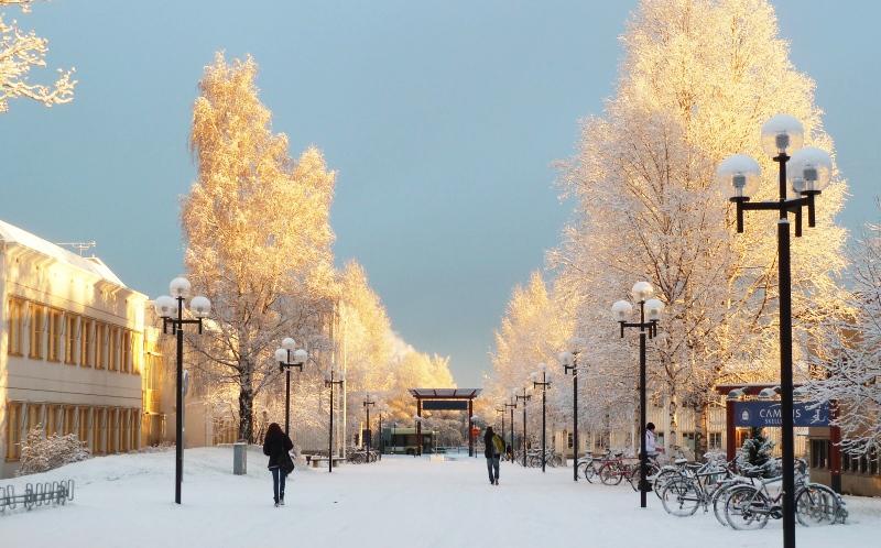 luleå tekniska högskola