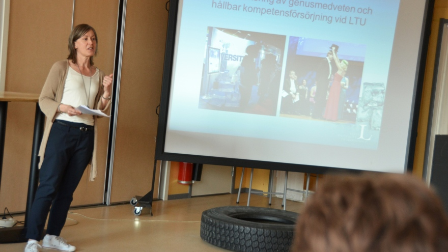 Carina Mattson, Luleå University of Technology