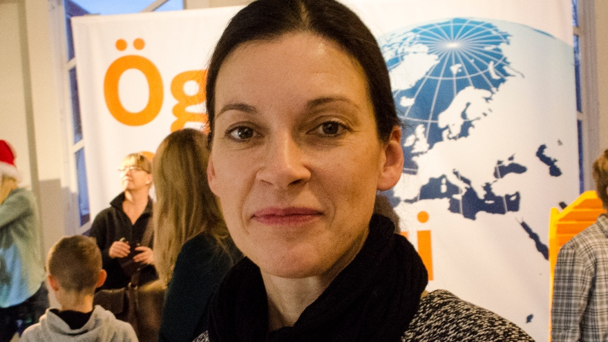 Christina Wanhainen, Professor in ore geology at Luleå University of Technology