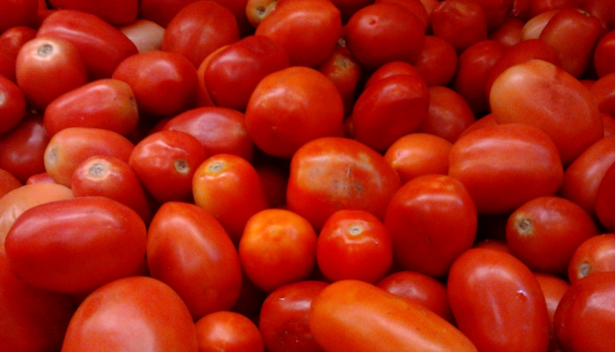 Roma or Bangalore Tomatoes - Wikimedia Commons