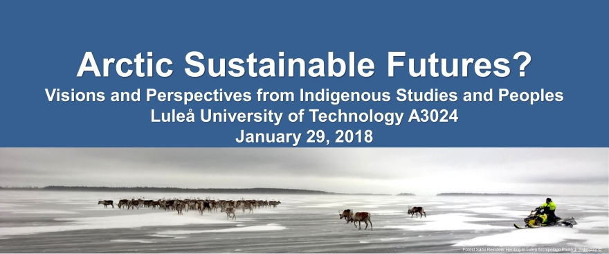 Arctic Sustainable Futures