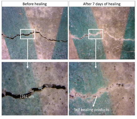 Self-repairing concrete developed at Luleå University of Technology