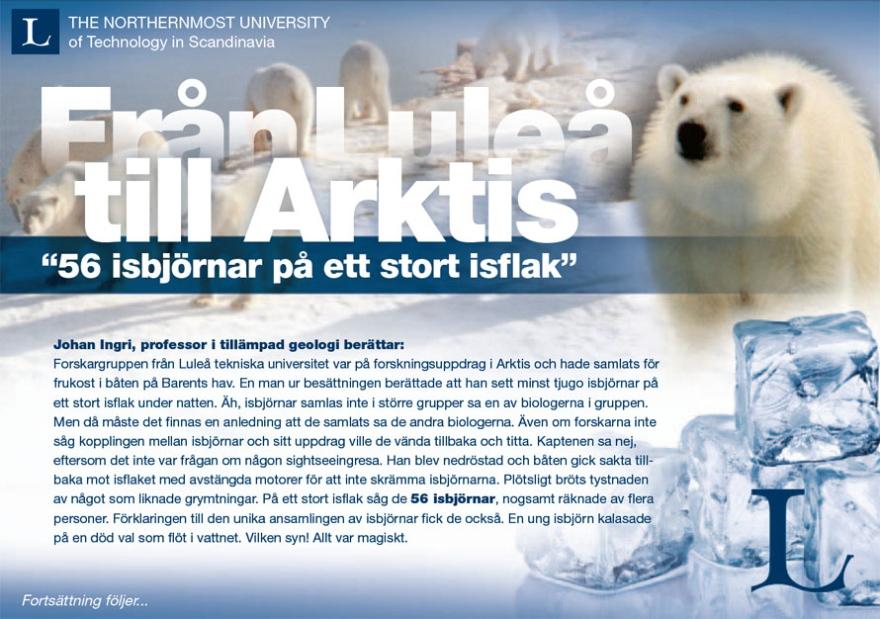 Luleå Bears