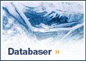 Databaser och artiklar